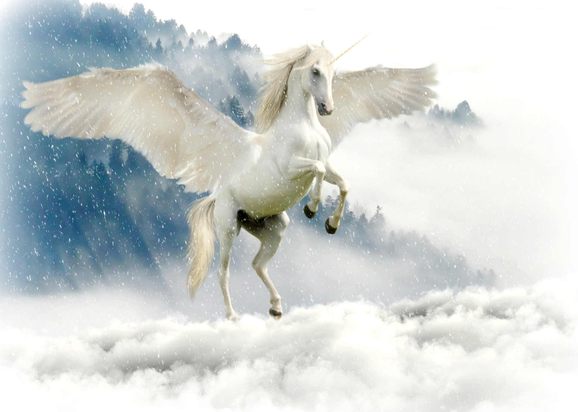 Unicorn independent contractor misclassification