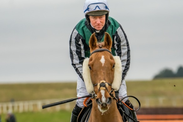 horse race dynamex